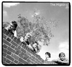 The Higsons
