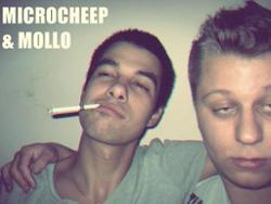 MicRoCheep & Mollo