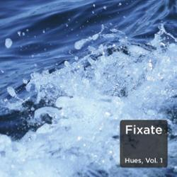 FiXate