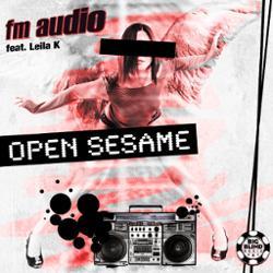 FM Audio feat. Leila K