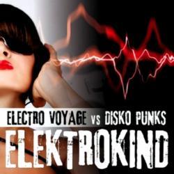 Electro Voyage vs. Disko Punks