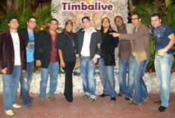 Timbalive