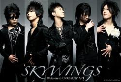 Skywings
