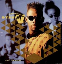 The Adventures Of Stevie V