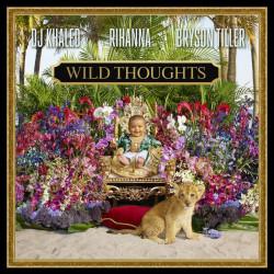 ✔ Dj Khaled Feat. Rihanna Wild Thoughts. Добро пожаловать на...