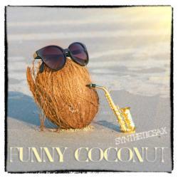 Обложка Syntheticsax - Funny Coconut