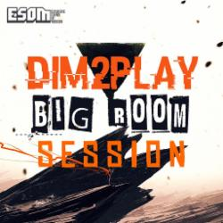 Обложка DIM2PLAY - Bigroom Session Level 1 (2015)