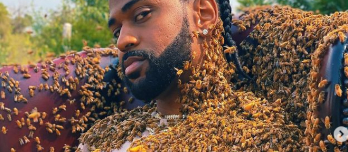 Big Sean копирует Джоли - в новом клипе его облепили пчелы