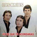 Los Brios