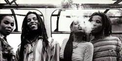 Ziggy Marley And The Melody Makers