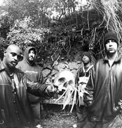 Cypress Hill and Roni Size