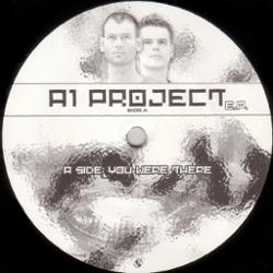 A1 Project