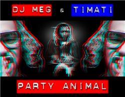 Timati ft. Dj Meg