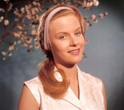 Heidi Bruhl