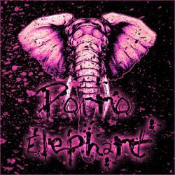 Porno Elephant