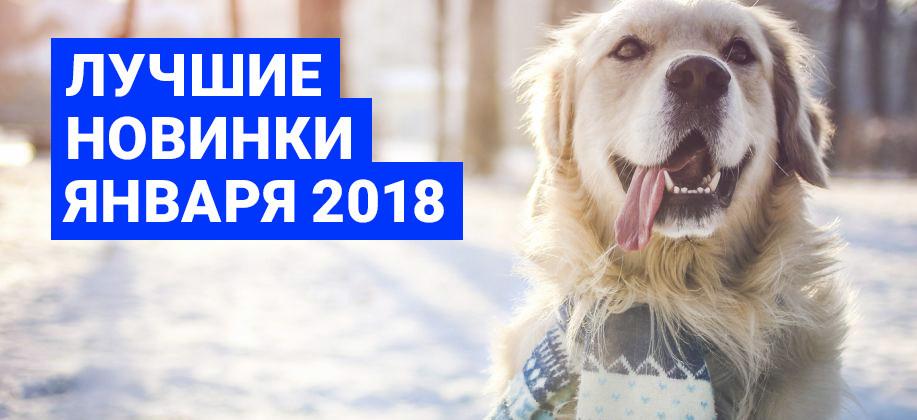 Лучшие новинки января 2018